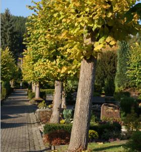 Friedhof Eiringhausen